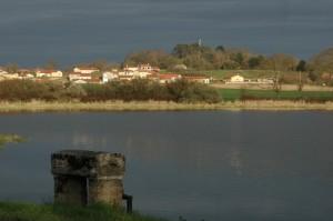 Une Dombes qui change, moins rurale (Chalamont)