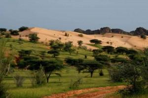 Paysage des Hodhs, Est Mauritanien