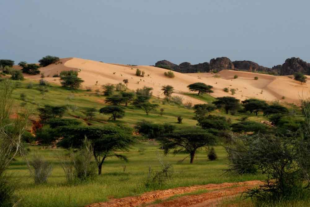 """Résultat de recherche d'images pour """"mauritanie paysage"""""""