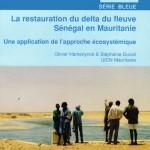 """Couverture du livre """"Restauration du delta du fleuve Sénégal en Mauritanie"""", par Olivier Hamerlynck & Stéphanie Duvail"""